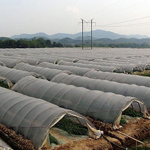 依兰县三道岗水稻育苗园区