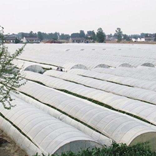 铁力市农委水稻育苗园区